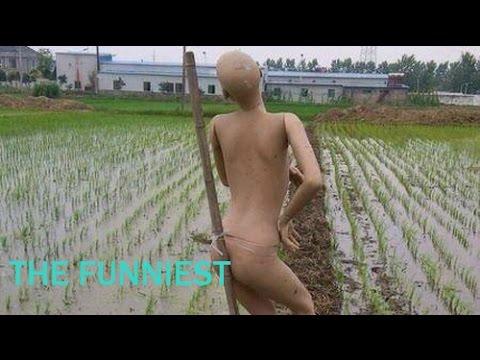 Cười ra nước mắt với những tấm ảnh chỉ có tại Việt Nam