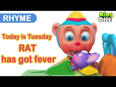 TODAY IS TUESDAY and RAT has got FEVER | English Nursery Rhymes Compilation for Children