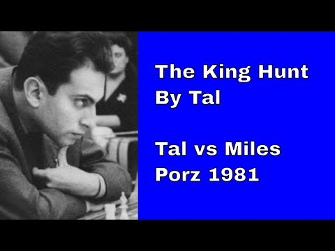 The breathtaking king hunt by Tal   Tal vs Miles Porz 1981  Tal-the greatest king hunter of all time