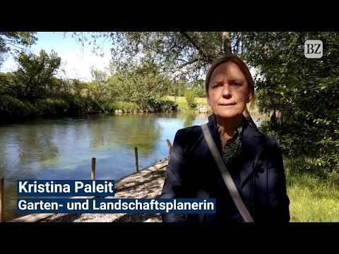 Dreister Orchideen-Klau im Naturschutzgebiet Taubergieß ...
