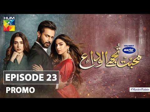 Mohabbat Tujhe Alvida | Episode 23 | Promo | Digitally Powered By Master Paints | HUM TV | Drama