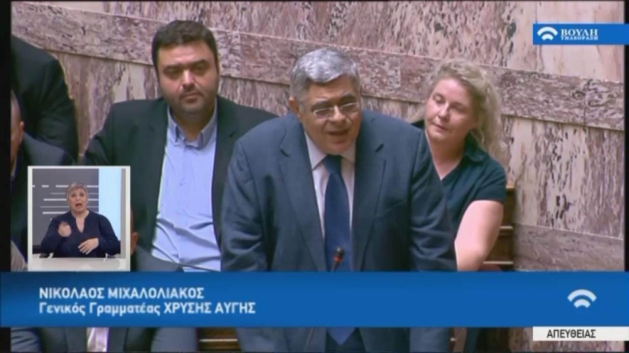 Δευτερολογία Ν.Μιχαλολιάκου (ΓΓ.ΧΑ) (Ενημέρωση για το Κυπριακό)(11/07/2017)