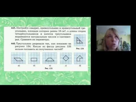Развитие познавательных УУД на уроках математики в 5-6 классах средствамиУМК О. В. Муравиной и Г. К. Муравина