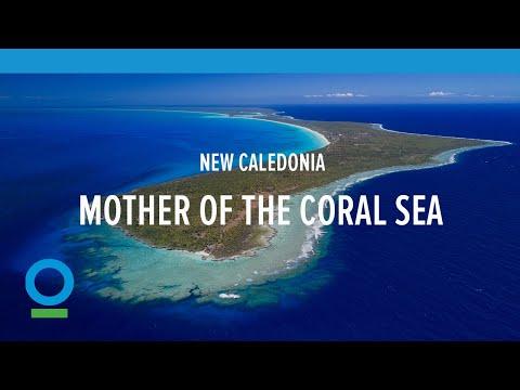 保護珊瑚礁 新喀里多尼亞島限制觀光人數