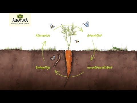 Alnatura | Bio macht Sinn!