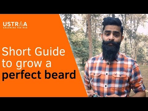 Beard oil - Short guide to grow a perfect beard