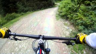 Video Bikepark Leogang Specialized Enduro MP3, 3GP, MP4, WEBM, AVI, FLV Agustus 2017