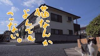 映画「猫なんかよんでもこない。」予告編 #Neko Nanka Yonde mo Konai #movie