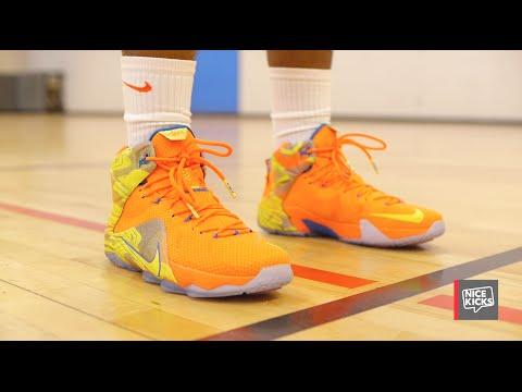NIKE LEBRON 12 \u0026#39;SIX MERIDIANS\u0026#39; SIZE 9.5 BRAND NEW IN BOX | basketball | City of Toronto | Kijiji