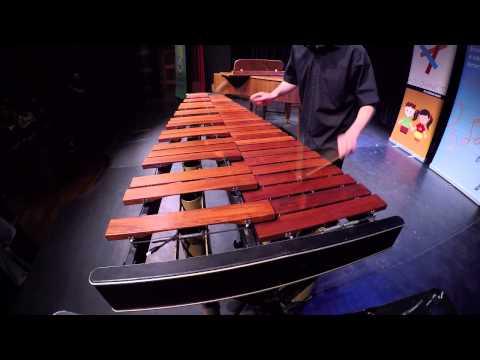 Adj teret a tehetségnek! 2014 - Siptár Bence (marimba) produkciója