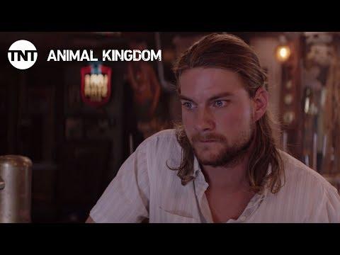 Animal Kingdom 2.03 Preview