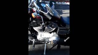 8. 2002 Harley Davidson Sportster XL883C walk-around