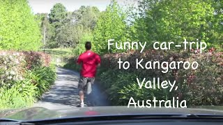 Kangaroo Valley Australia  City pictures : Road Trip to Kangaroo Valley, South New Wales, Australia