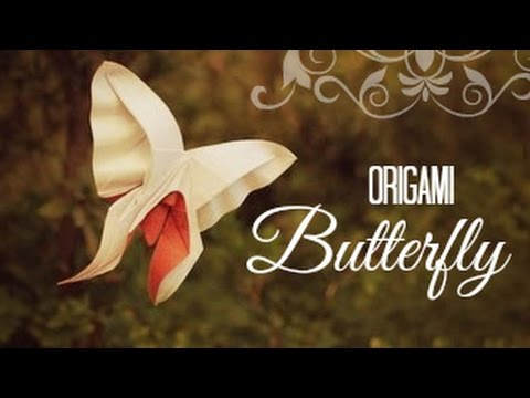 Butterfly Tutorial - 020