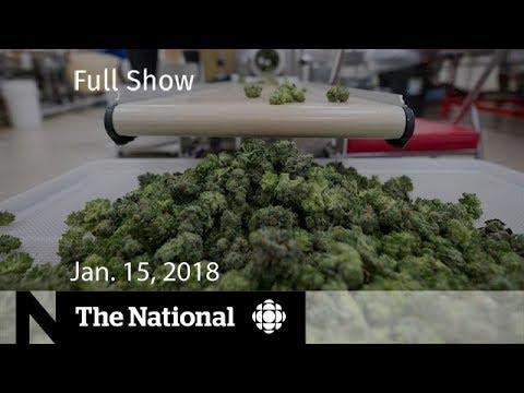 The National for January 15, 2018 - Bystander Dead, Marijuana, North Korea Summit (видео)