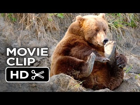 Bears Bears (Clip 'Stuffed Bears')