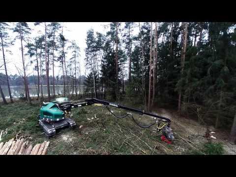 Forstbetrieb Haneder Holzheim - WFW Harvester Einsatz Forst
