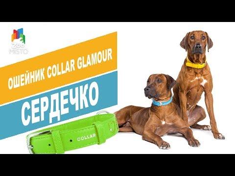 Ошейник Collar Glamour Сердечко
