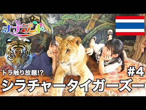 , title : '【ナナランドTV】JAPAN EXPO 2020 タイ・バンコクVLOG【Ep.4 満喫!シラチャ―タイガーズー!】'