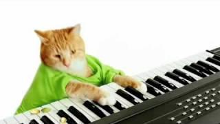 Keyboard Cat's Wonderful Pistachios Commercial!