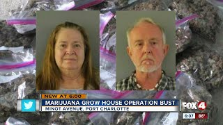 PORT CHARLOTTE, Fla. -- Charlotte County Narcotics and Street Crimes Units arrested two people in the Gulf Cove community, Thursday, in connection with a marijuana grow operation.