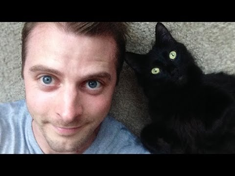 Guide - How do cats show their love to owners? Here's Cole the Black Cat & Marmalade's guide to loving a human! Happy Valentine's Day everyone, we hope you get lots ...