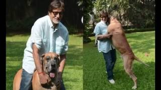 Amitabh Bachchan House Jalsa Inside View   MUST SEE