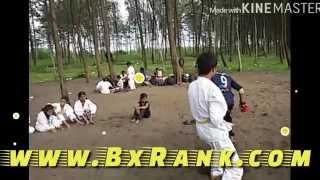 Karate (Martial Art) Fight Scene