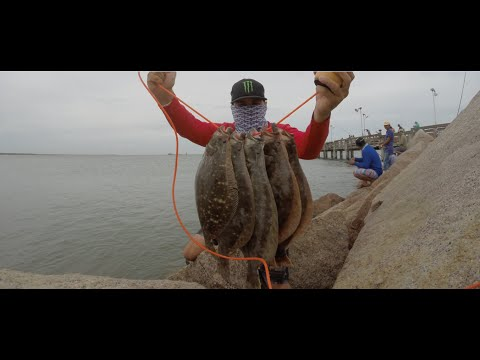 Flounder fishing coastal fishing videos for Flounder fishing galveston