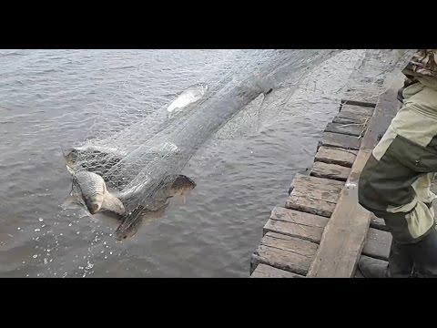 кастинговая сеть для крупной рыбы