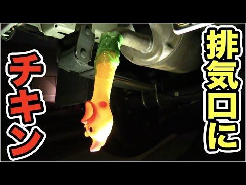 日本網友把3個尖叫雞塞進汽車排氣管,結果超狂的改造效果不是普通的爆笑啊!