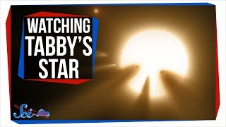 Why Everyone Was Watching Tabby's Star Last Weekend by SciShow Space