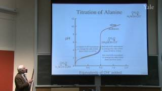 6. Brønsted Acidity And The Generality Of Nucleophilic Substitution