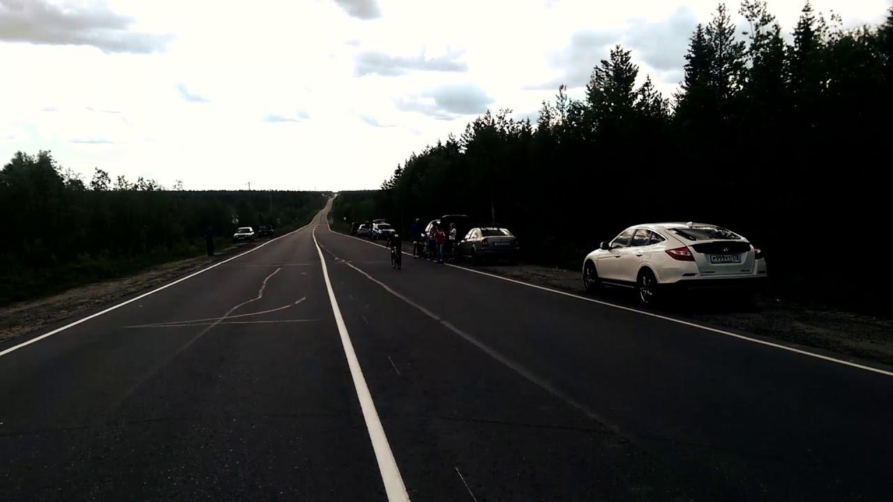 Велогонка на шоссе