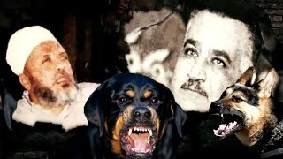 للكبار فقط - الطاغية جمال عبد الناصر يستورد كلاب لممارسة الجنس مع المعتقلين في السجن الحربي