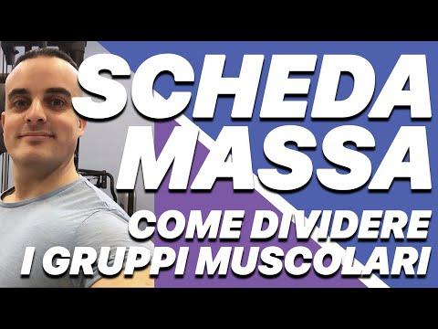 Scheda Palestra: come dividere i gruppi muscolari