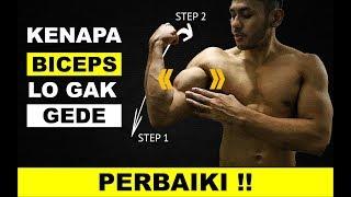 Video Cara Membesarkan Otot Biceps - Kesalahan Latihan Tangan || Bicep Tricep Besar MP3, 3GP, MP4, WEBM, AVI, FLV November 2018