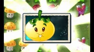 Plants Vs Zombies 2 Nueva Planta Tomate SolarFinalmente se conoce la habilidad de tomate solar, y aunque esta planta pueden que no salga en esta actualización puede tardar un poco mas en aparecer, aun no esta disponible esta planta ni en la tienda pero se puede apreciar su habilidad de esta planta y su costo.
