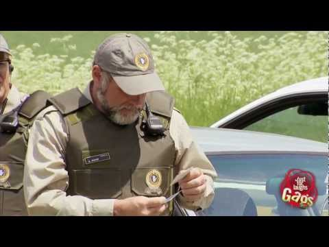 [Just4Laughs Gags] Tập 193: Police Border Patrol Pigeon Prank