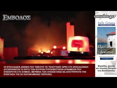Video - Προβλήματα στις ακτοπλοϊκές συγκοινωνίες λόγω των ισχυρών ανέμων-Πτώσεις δέντρων σε Β. Ελλάδα, Αττική (video)