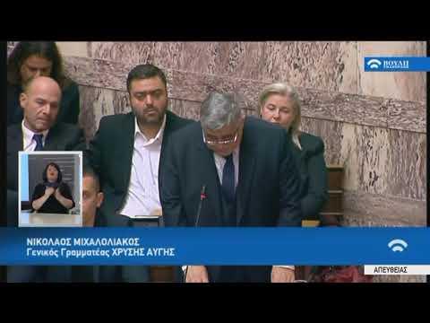 Ν.Μιχαλολιάκος(Γεν.Γραμ.Χρυ.Αυγής)(Μεταρρυθμίσεις προγράμματος οικονομικής προσαρμογής)(15/01/2018)