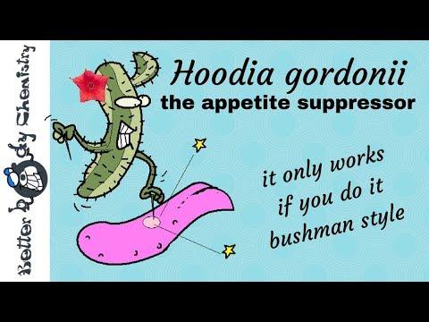 Hoodia gordinii appetite suppression bushmen style