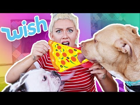 TESTING CHEAP DOG TOYS FROM WISH  Skyes Family