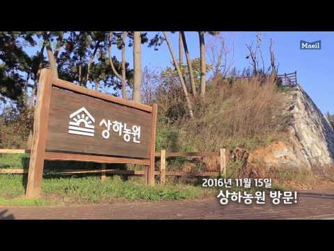 김나영과 함께한 앱솔루트 유기농 안심원칙