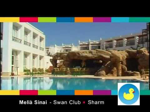 MELIA SHARM Swan Club