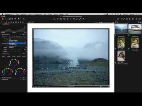 Bildbearbeitung und Bildoptimierung mit Capture One Pro 10 (DE)