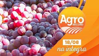 Agro Record na íntegra - 18/Agosto/2019 - Bloco 1