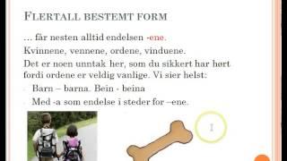 En serie ved Bente Bergesen som er lærer på Johannes Læringssenter.