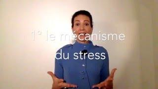 Vidéo 13/21 pour doubler votre satisfaction au travail:  sérénité