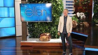 Video Ellen's Audience Plays Never Have I Ever MP3, 3GP, MP4, WEBM, AVI, FLV Januari 2019